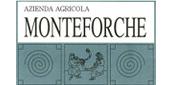 logo_monteforche